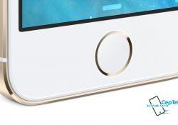 Iphone 5S Home Tuşu Değişimi ve Tamiri